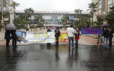 Manifestation contre le salon du chiot à Nice