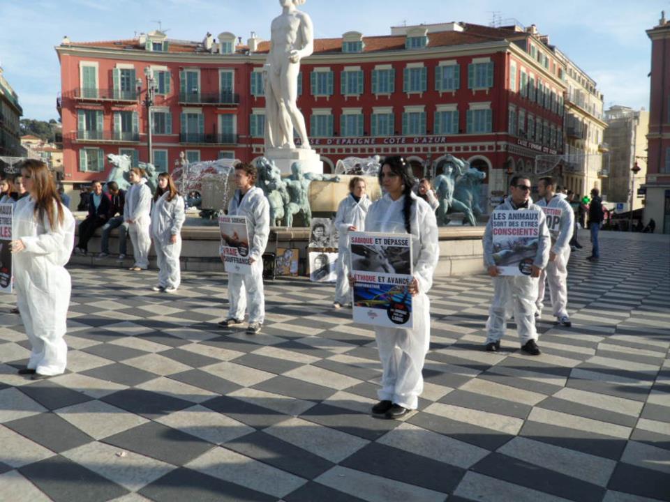 Stop aux animaux de labo 2012 3