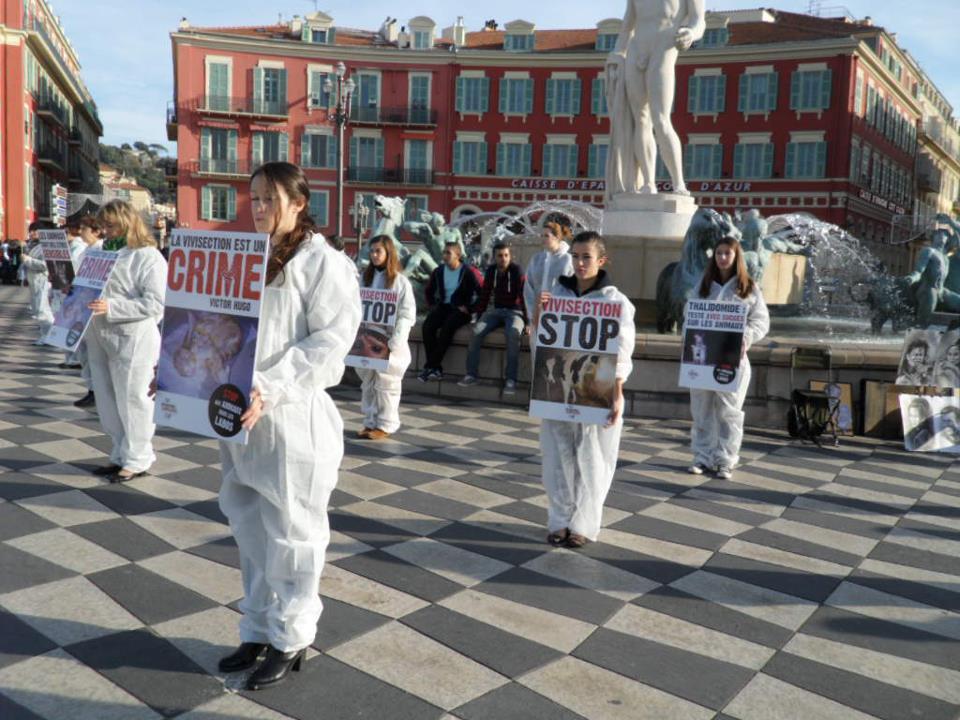 Stop aux animaux de labo 2012 4